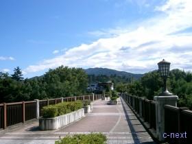 [写真]西岸から見た橋