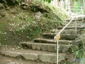 [写真]観音堂下の参道