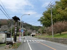 [写真]県道からの入口