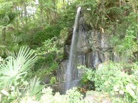 [写真]園内の滝