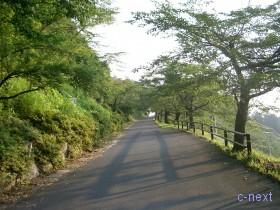 [写真]見晴らしの丘への坂道