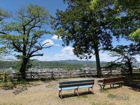 [写真]見晴らしの丘のベンチ