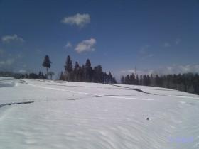 [写真]雪の日