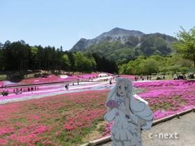 [写真]芝桜の丘のめんまちゃん
