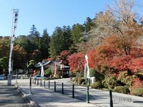[写真]宝登山神社の紅葉
