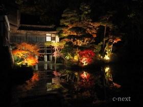 [写真]記念館横の池
