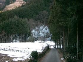 [写真]氷柱への道