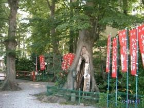 [写真]今宮神社の龍神池