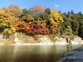 [写真]長瀞渓谷の紅葉