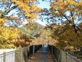 [写真]金石水管橋の道