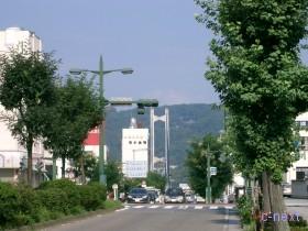[写真]宮側大辻付近から見た公園橋