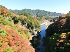 [写真]白川橋から見た渓谷
