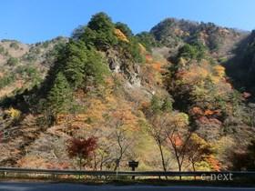 [写真]中津峡の紅葉
