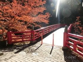 [写真]登竜橋