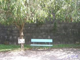 [写真]ベンチ