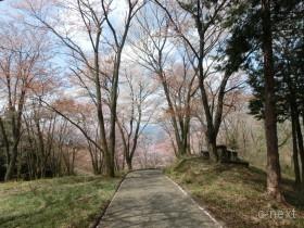 [写真]みはらし園地への道