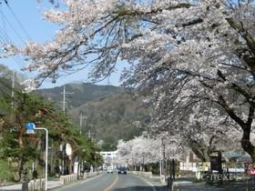 [写真]宝登山神社参道の途中から見た長瀞駅方面