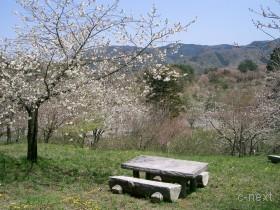[写真]休憩ベンチ