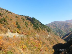 [写真]豆焼橋付近の紅葉