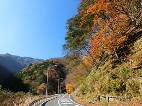 [写真]出会いの丘への道