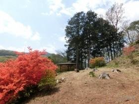 [写真]南西方向の風景