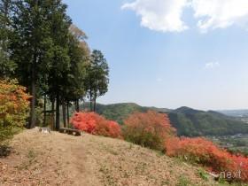 [写真]北東方向の風景