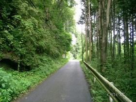 [写真]和銅遺跡方面への車道