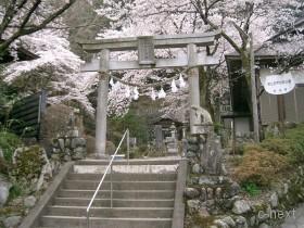 [写真]若御子神社