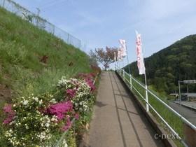 [写真]新道からの入口の坂