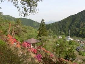 [写真]米山薬師から見た風景