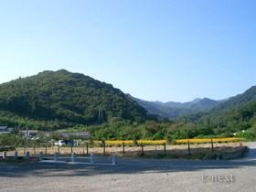 [写真]椋神社からの風景・秋